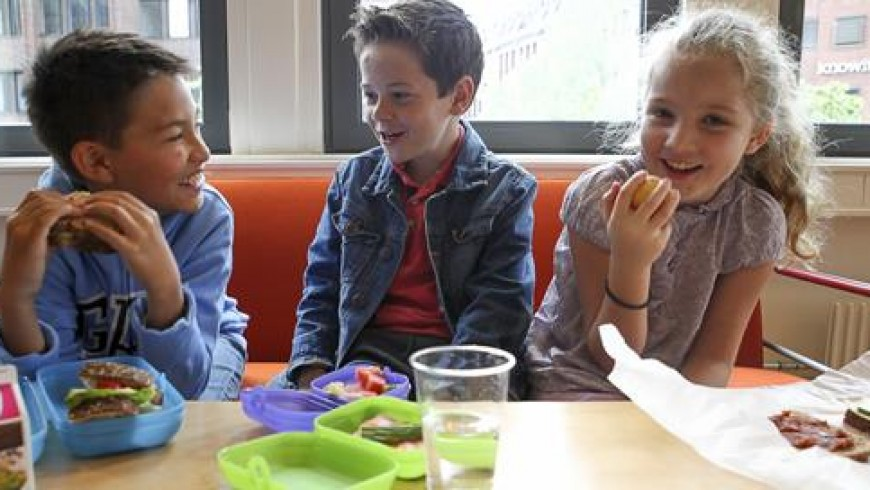Nye Retningslinjer for skolemåltid – Hvem bryr seg?